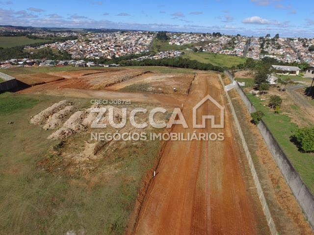 Loteamento à venda na Avenida Monteiro LobatoJardim Carvalho - 175426-2.jpg